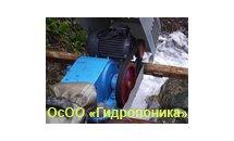 gidroponika_logo.png