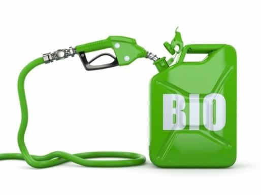 Учёными создан уникальный вид бактерий, способный удешевить биотопливо