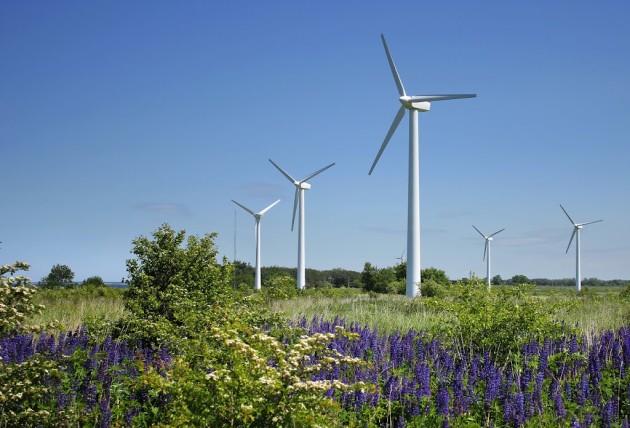 Первый этап по развитию ветроэнергетики в Ульяновской области реализует компания Fortum