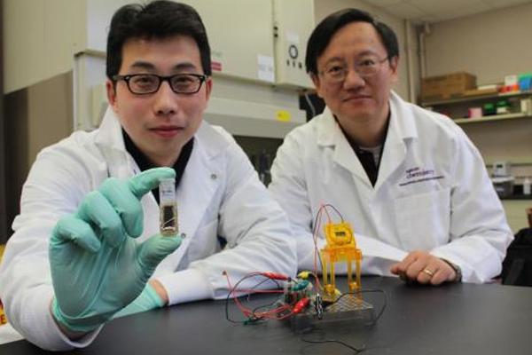 Ученые превратили кубик сахара в гибкий аккумулятор