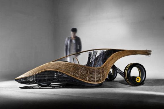 В Нидерландах создали первый в мире биоразлагаемый автомобиль