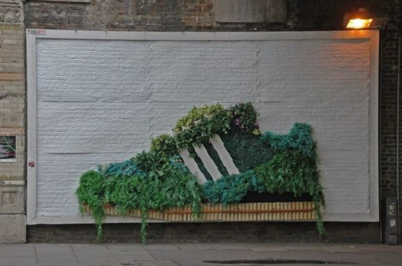 Лондонская компания выпустит экокроссовки из водорослей