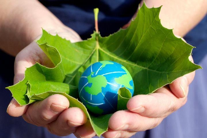 Минприроды предлагает развивать зеленое финансирование с помощью льгот