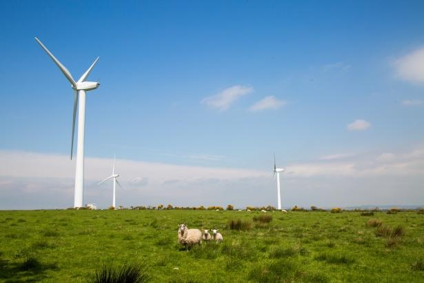 В Ростовской области построят ветропарки