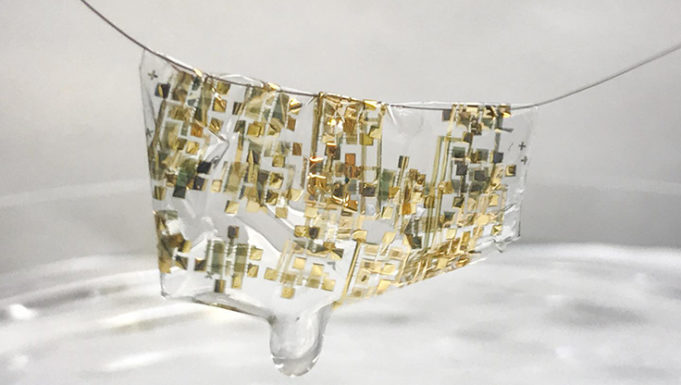 Ученые создали разлагающуюся электронику