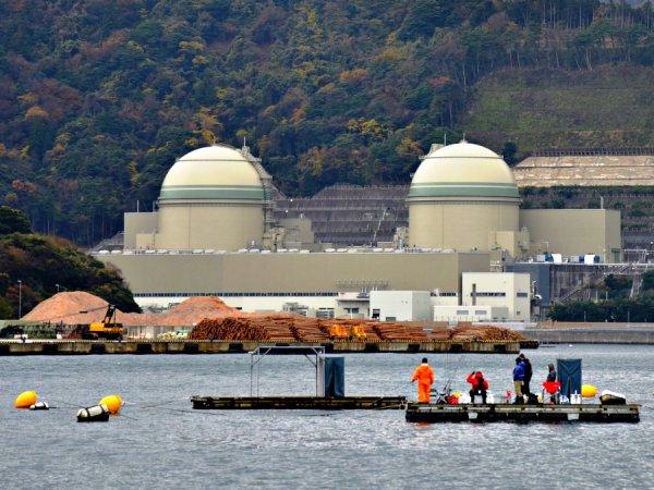 Япония может полностью отказаться от атомной энергии к 2030 году