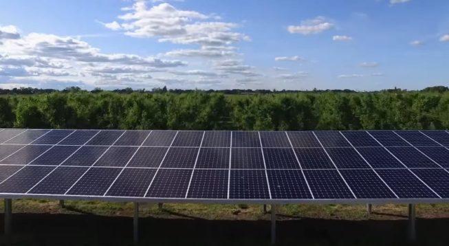 Кредит на солнечную электростанцию теперь можно получить в Ощадбанке