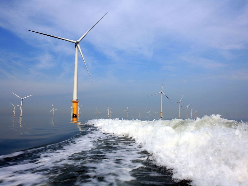 На побережье Финского залива планируют построить ветропарк
