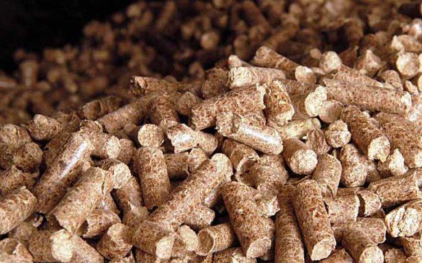 Костромская область начнет выпускать топливные гранулы