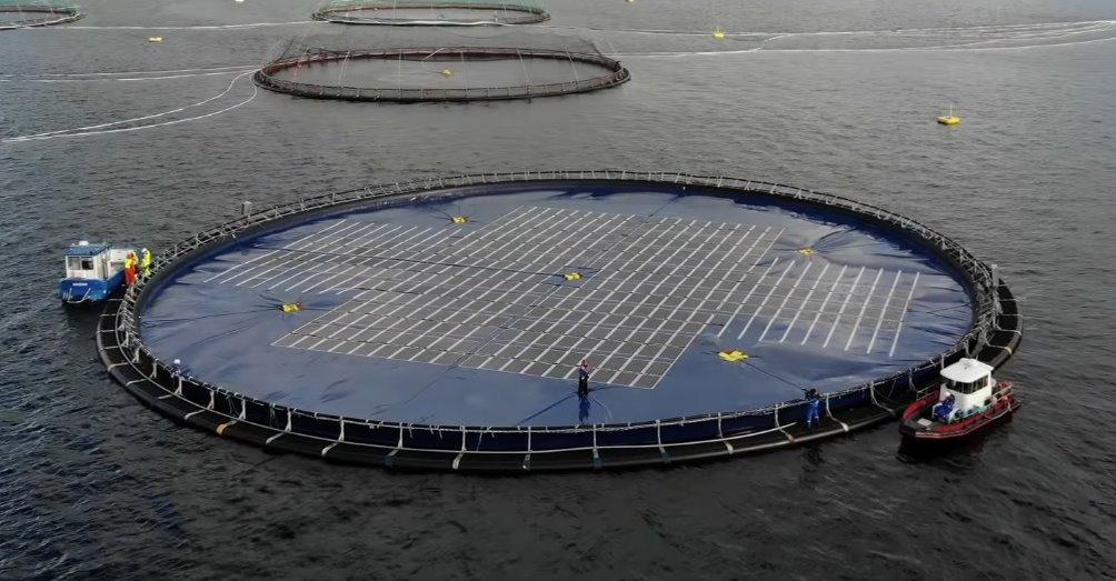 Инновационную плавучую солнечную электростанцию Ocean Sun испытают в Албании