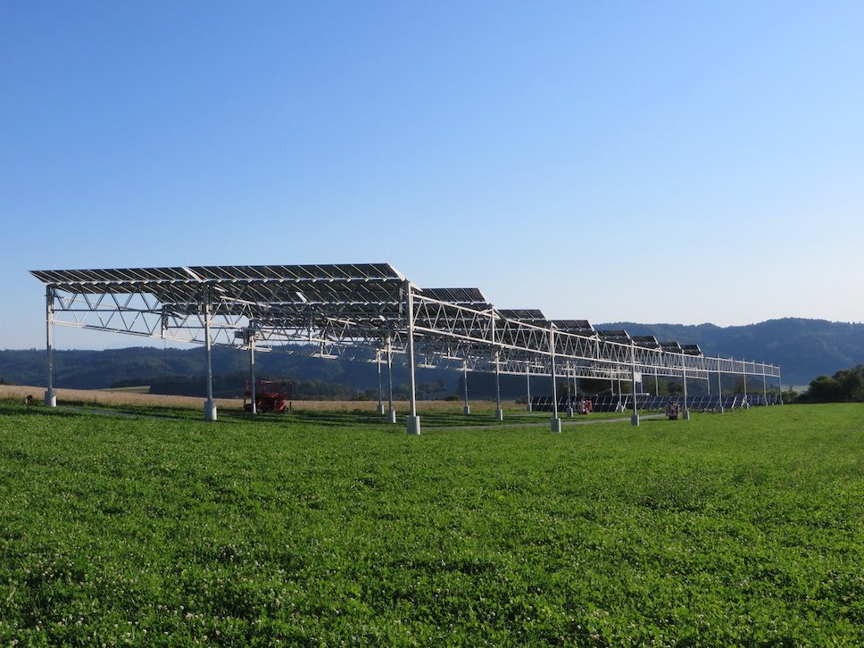 Европа делает ставку на агрофотовольтаику - комбинацию солнечной энергетики и сельского хозяйства