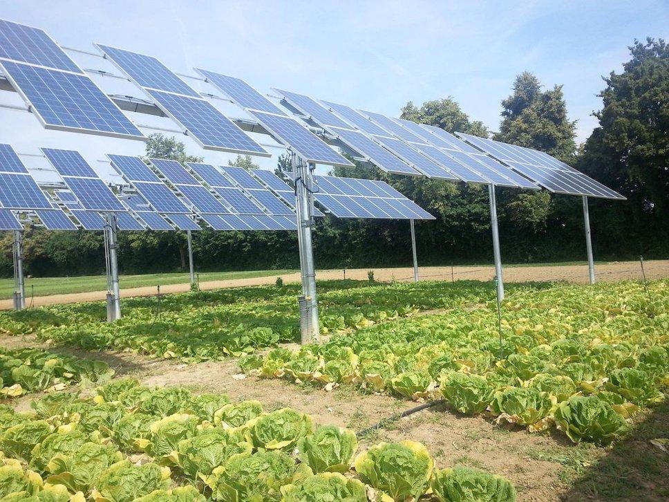 Исследования солнечной энергии от UMD для сельского хозяйства США