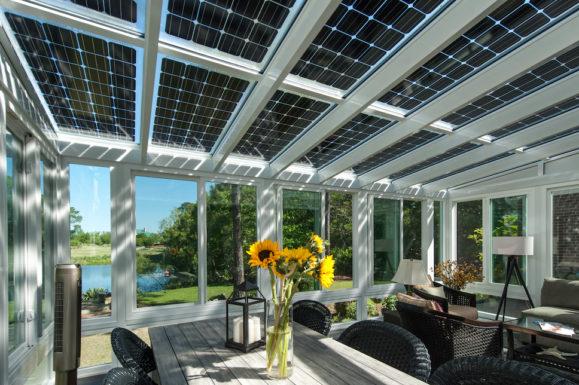 Под прозрачными солнечными батареями растения себя чувствуют отлично