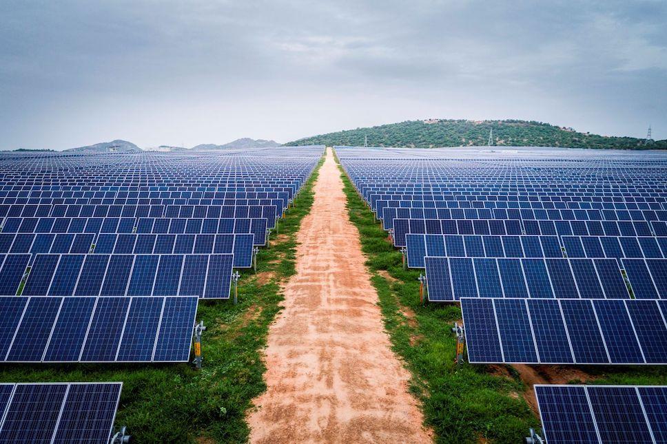 BIO-установки: природа и солнечные панели будущего