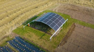 Солнечная арка MarcS сделает агровольтаику эффективнее (Видео)