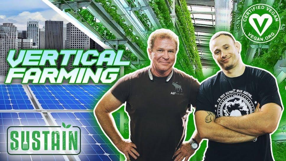 Первая сертифицированная VEGAN ферма на солнечной энергии (Видео)